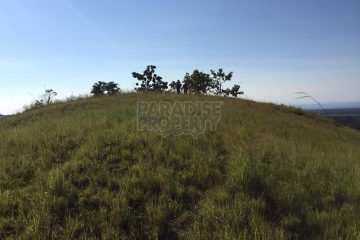 Panoramic view 39,820 sqm Land For Sale in Tambolaka, Southwest of Sumba