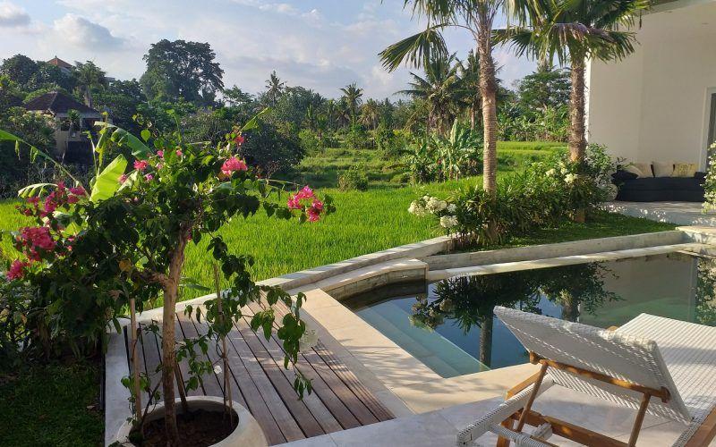 Modern Beautiful 3 Bedroom Villa – South of Ubud  – Rice Field Views